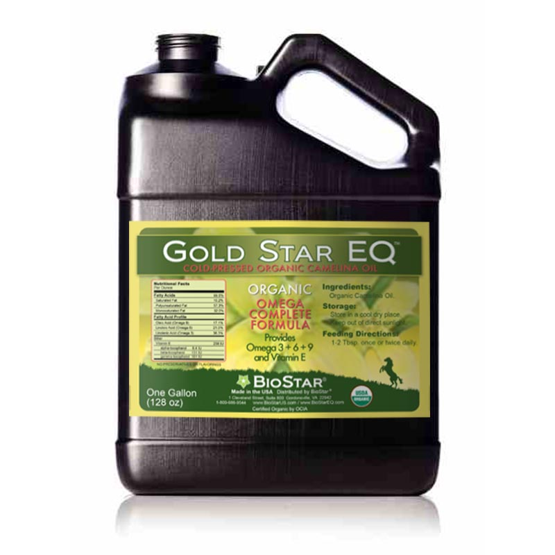 Gold Star Camelina Oil